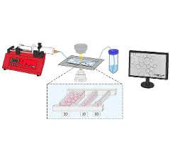 Bild 2: Experimentelles Setup einer MEZK sowie beispielhafte Darstellung unterschiedlicher Kammergeometrie.
