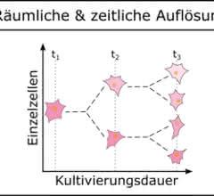 Bild 3: Schematische Darstellung der räumlichen und zeitlichen Auflösung sowie des Nährstoffprofils der MEZK.