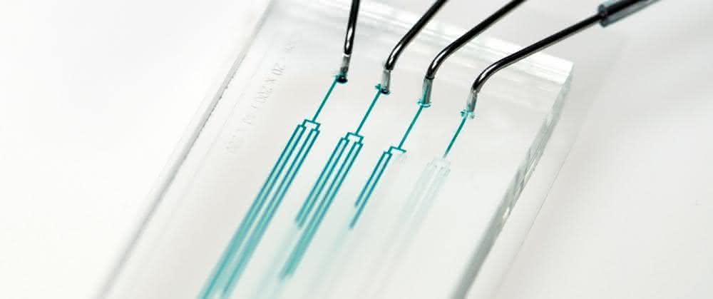 Chip für die mikrofluidische Einzelzellkultivierung (MEZK)