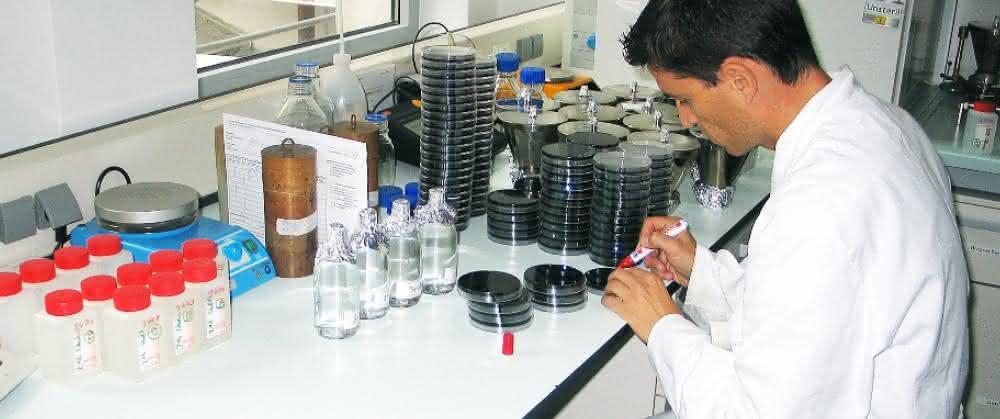Wasseruntersuchung am IHPH: Zur Testung auf ein Bakterium – hier Legionellen – wird im nächsten Schritt die Filterprobe auf einem spezifischen Nährboden in einer Petrischale bebrütet.