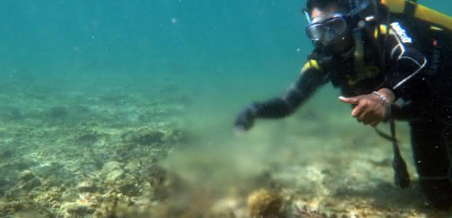 Grundwasserquelle in einem Riff vor der Insel Lombok, Indonesien