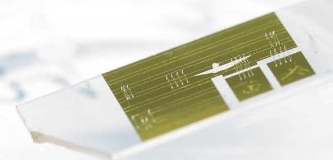 Mit diesem ca. 2 cm langen Chip lässt sich das Wellenspektrum von Infrarotlicht präzise aufschlüsseln.
