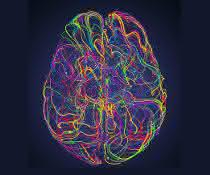 Abstract image of the brain