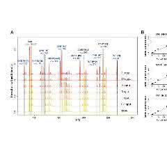 Grafiken: Spektren und Kalibrationskurven
