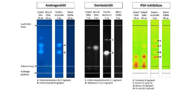Mit spezifischen Tests gekoppelte Dünnschichtchromatogramme zur Prüfung auf Andrgogenität, Gentoxizität und PSII-Inhibition