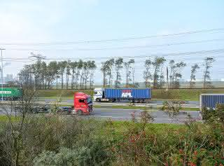 E-Lkw im Hafenbetrieb: Hafen Rotterdam: Containertransport per E-Lkw