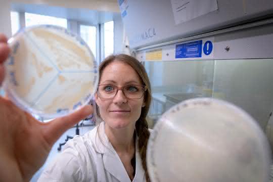 Frau im Labor hält eine Petrischale (mit Kulturen und Beschriftung) hoch