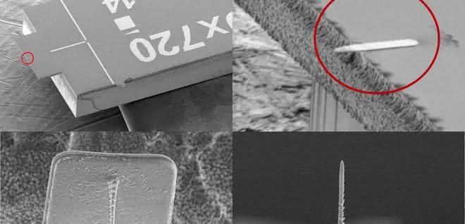 Auf der Platte ist der Cantilever befestigt (roter Kreis), auf dem die Tastspitze angebracht ist (unten).