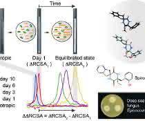 Messung der Residual Chemical Shift Anisotropy in einem flüssigkristallinen Medium.