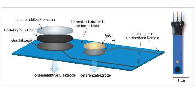 Bild 1: Schematischer Aufbau (links) und Sensor (rechts).