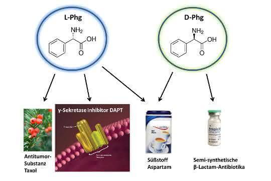 Formeln von L- und D-Phenylglycin mit Beispielen, wofür Phenylglycin eingesetzt wird