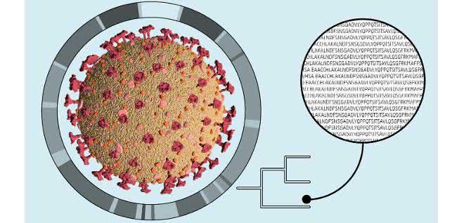 SARS-CoV-2-Sequenzierung