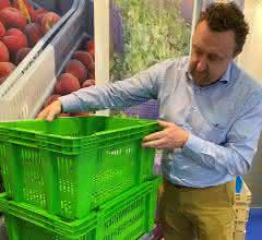 Kunststoffpaletten: Nachhaltige Hygiene bei Transport und Lagerung