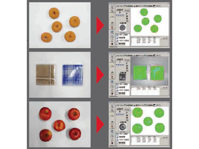 Bildverarbeitung: Vision-System erkennt unregelmäßig geformte Objekte