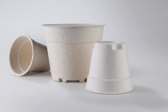 Naturfaser-Verpackungsprodukte