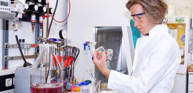 Professorin Ruth Schmitz-Streit im Labor
