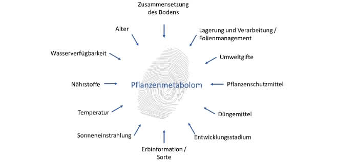 Endogene und exogene Parameter