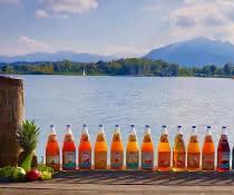 Fruchtsäfte (aufgereihte Flaschen)