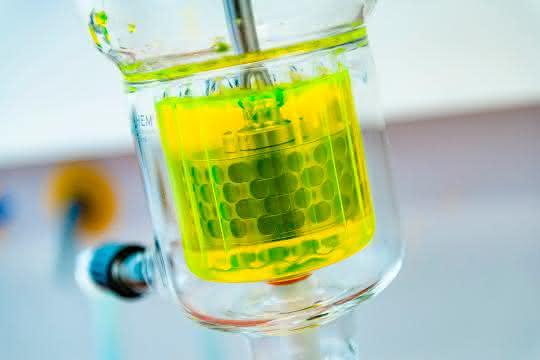 Enzymreaktor im Labor