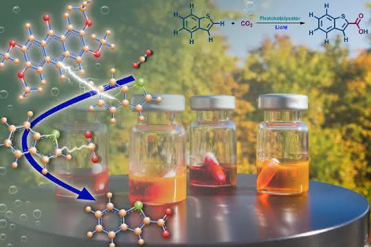 Kunstbild (Molekülstrukturen; Lichtstrahl; Präparategläschen mit farbigen Substanze; Bäume im Hintergrund)