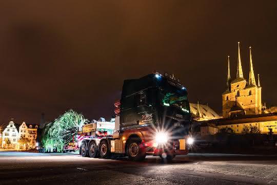 MAN Schwerlast-TGX liefert Weihnachtsbaum für Erfurter Domplatz