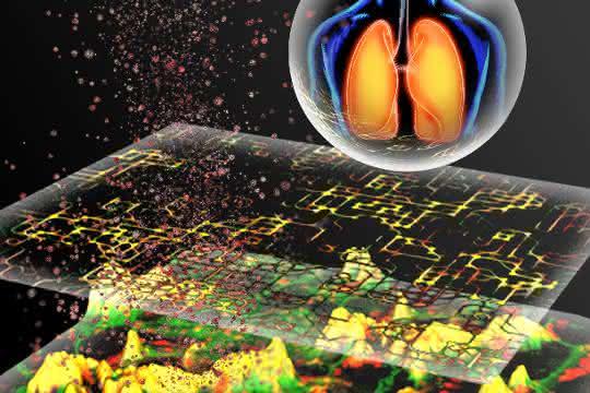 Grafische Darstellung von Partikel-Zell-Interaktionen