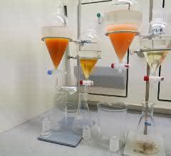 Wirkstoff-Extraktion der Roten Hefe