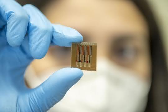 Person zeigt den Mikrofluidik-Biosensor