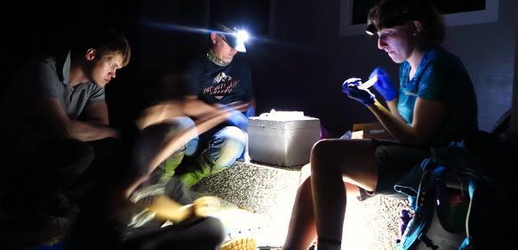 Forscher sitzen mit Taschenlampen bei Dunkelheit im Außengelände